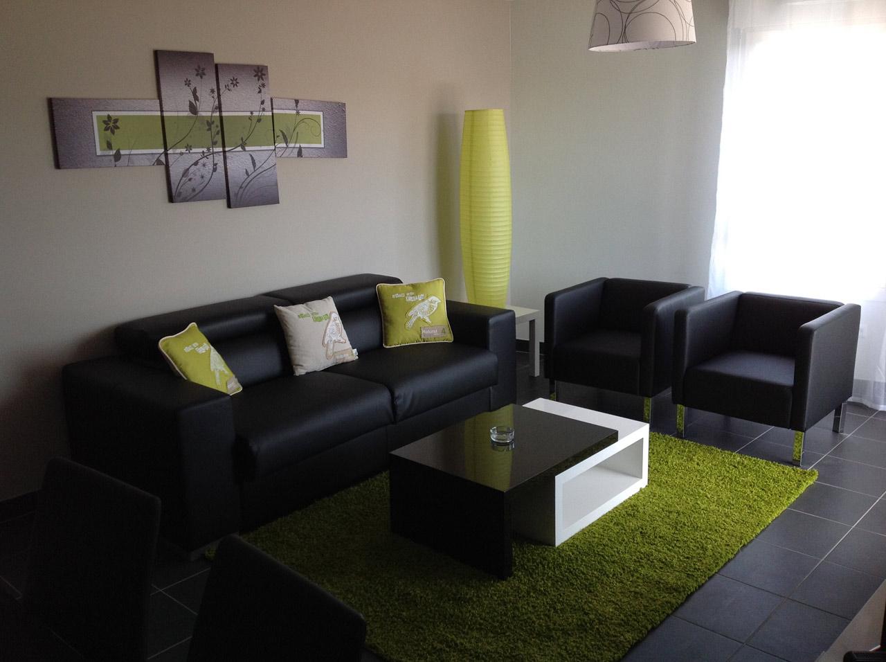 Appartement T3 Vert Location Appartement Meubl Bordeaux  # Salon Meuble En Vert